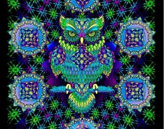 1*1,5 м Мудрая сова — синий вариант
